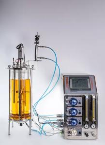 lab scale bioreactor